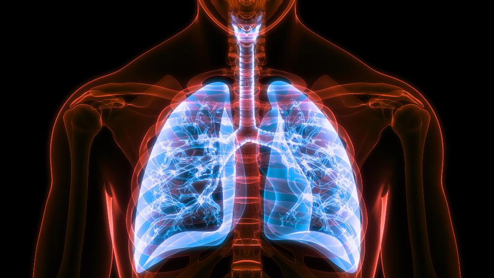 Atemtraining Lunge